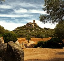 Bike Tour - Forests and Old Mines of Sulcis